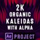 Organic Kaleidoscopes - VideoHive Item for Sale