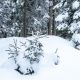 Beautiful Winter Landscape with Snow Covered Trees. Winter Mountains. - VideoHive Item for Sale
