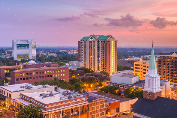Tallahassee, Florida, USA Skyline - Stock Photo - Images