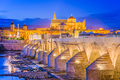 Cordoba, Spain Skyline - PhotoDune Item for Sale