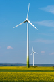 Wind generators in a rapeseed field  - PhotoDune Item for Sale