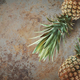 Pineapple on concrete - PhotoDune Item for Sale