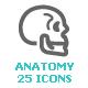 Human & Anatomy Mini Icon - GraphicRiver Item for Sale