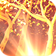 Gold Light Trees - VideoHive Item for Sale