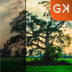 21 Natural Landscape Lightroom Presets - GraphicRiver Item for Sale