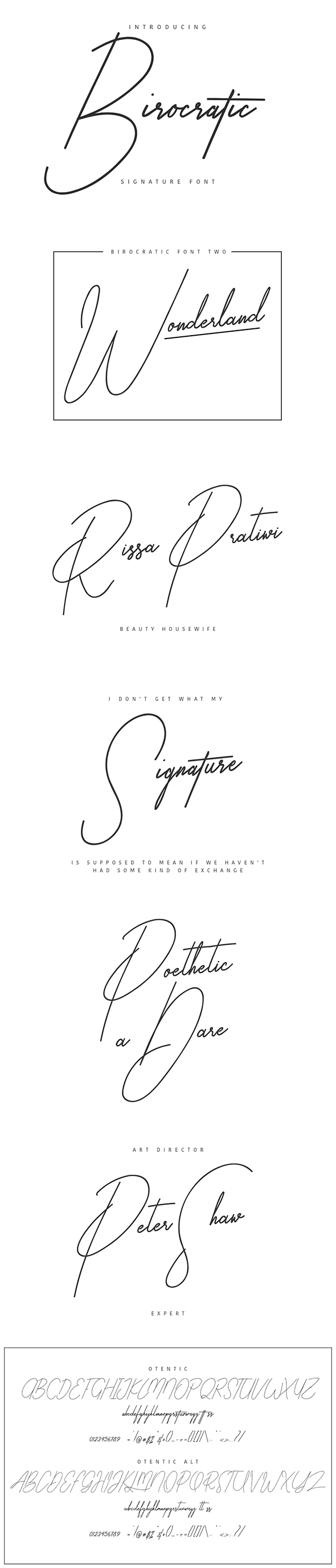 Birocratic Signature Typeface - Calligraphy Script