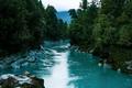 New Zealand Tourism Hokitika Gorge Wide Landscape with Trees - PhotoDune Item for Sale