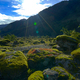 New Zealand Tourism Moss Field With Red Lichen Wide Shot with Sky - PhotoDune Item for Sale