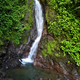 Waterfall in Jungle - VideoHive Item for Sale