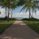 Flight of a Camera Along the Alley with Palm Trees To the Sea in Luxury Resort - VideoHive Item for Sale