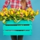Cheerful Young Woman Florist Holding Box of Tulips - VideoHive Item for Sale
