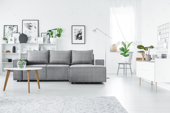 Grey and white living room - Stock Photo - Images