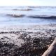 Baltic Sea Shore in Spring - VideoHive Item for Sale