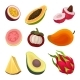 Colorful Flat Vector Set of Exotic Fruits. Natural