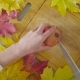 Autumn Naturemorte. Chef Cutting a Garnet - VideoHive Item for Sale