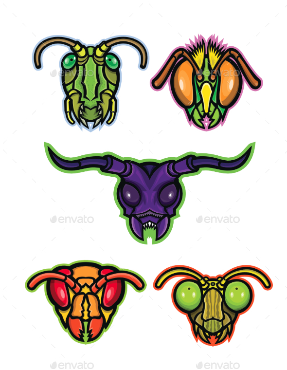 Insects Mascot Collection - Animals Characters