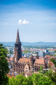 cathedral in Freiburg - PhotoDune Item for Sale