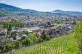 the city Freiburg im Breisgau Germany - PhotoDune Item for Sale