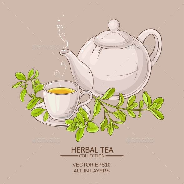 Cup of Marjoram Tea and Teapot - Food Objects