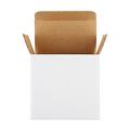 Opened white box isolated on white background - PhotoDune Item for Sale