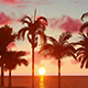 Palm Trees At Sunset - VideoHive Item for Sale