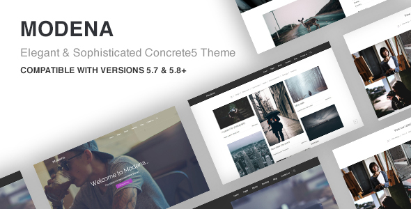 Modena Multi-purpose Concrete5 Theme - Concrete5 CMS Themes