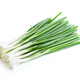 Green onion close-up isolated on a white background. Food concept. - PhotoDune Item for Sale