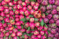 Bouquet of red tulips for sale - PhotoDune Item for Sale
