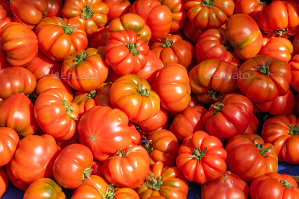 Ripped sicilian tomatoes for sale - Stock Photo - Images