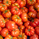Ripped sicilian tomatoes for sale - PhotoDune Item for Sale