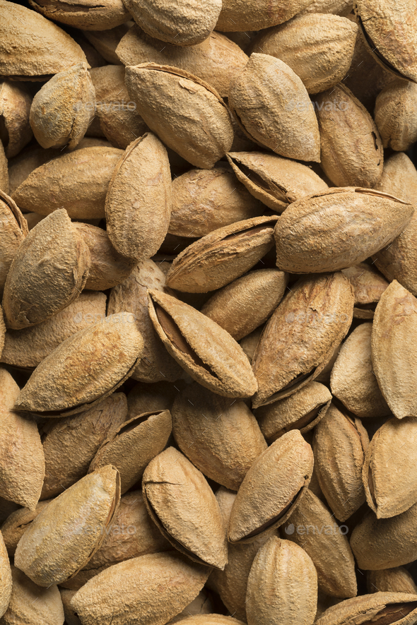 Unpeeled almonds - Stock Photo - Images