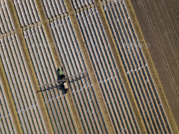 Straight down view of tractor spraying chemical fertilizer or pe - Stock Photo - Images