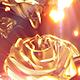 Golden Rose Backdrop - VideoHive Item for Sale