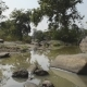 Beautiful River National Park, India - VideoHive Item for Sale