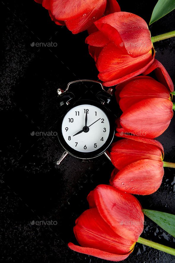 Black alarm clock near bouquet red tulips - Stock Photo - Images