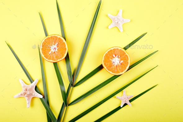 Orange fruit, starfish and palm leaves - Stock Photo - Images