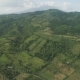 Palms and Agricultural Land in the Mountainous Province - VideoHive Item for Sale