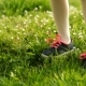 Two Little Girls Are Standing on Green Grass - VideoHive Item for Sale
