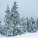 Beautiful Winter Landscape with Snow Covered Trees in Mountains - VideoHive Item for Sale