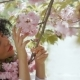 Beautiful Woman Touch Sakura Flowers - VideoHive Item for Sale