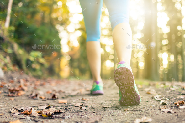 Woman walking and hiking in autumn woods - Stock Photo - Images