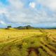 Landscape of Easter Island, Chile - PhotoDune Item for Sale