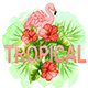 Pink Flamingo and Red Tropical Flowers - GraphicRiver Item for Sale