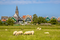 Traditional dutch Village with colorful wooden houses - PhotoDune Item for Sale