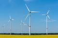 Wind power plants in a flowering rapeseed field - PhotoDune Item for Sale