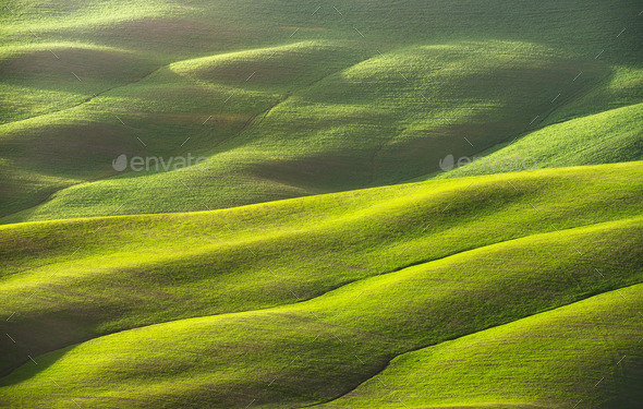 Abstract spring landscape, field and tracks texture. Tuscany, It - Stock Photo - Images