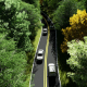 Road in the Forest - VideoHive Item for Sale