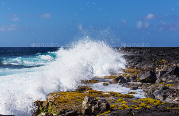 Wave - Stock Photo - Images