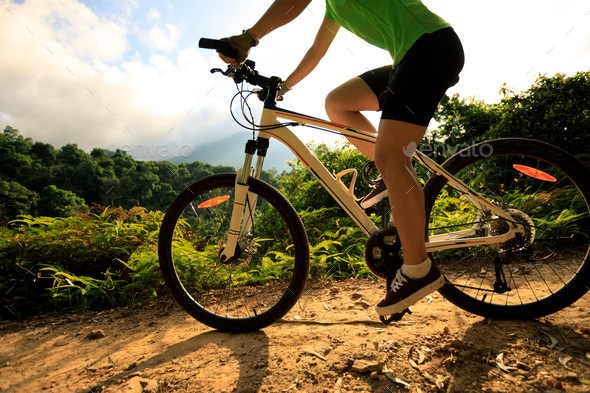 Riding mountain bike on forest trail - Stock Photo - Images