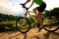 Riding mountain bike on forest trail - PhotoDune Item for Sale